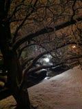 Notte di Snowy Fotografia Stock Libera da Diritti