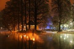 Notte di Wiinter nel parco Fotografie Stock Libere da Diritti
