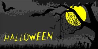 Notte Halloween Fotografia Stock