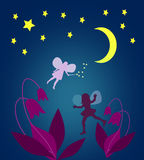 Notte illuminata dalla luna con i fatati Fotografia Stock Libera da Diritti
