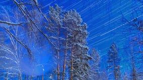 Notte illuminata dalla luna sul cordone. Piste della stella. Rivestimento di tempo archivi video