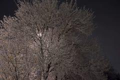 Notte, inverno, paesaggio urbano Orario invernale immagini stock libere da diritti