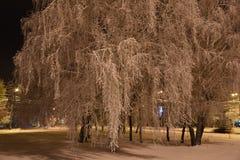Notte, inverno, paesaggio urbano Orario invernale fotografie stock libere da diritti