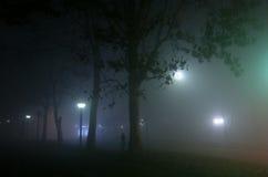 Notte nebbiosa Immagine Stock