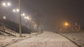 Notte nebbiosa, strada pedonale Fotografie Stock Libere da Diritti