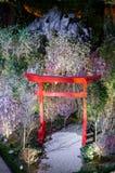 Notte Sakura al giardino dalla baia Fotografia Stock