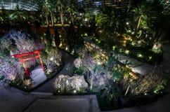 Notte Sakura al giardino dalla baia Immagini Stock Libere da Diritti