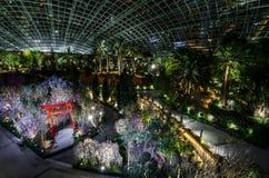 Notte Sakura al giardino dalla baia Immagine Stock