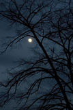 Notte scura Fotografie Stock Libere da Diritti