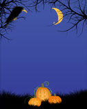 Notte spaventosa Forest With Big Black Bird e Jack-o-Lant di Halloween Immagini Stock