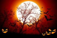 Notte spaventosa Halloween degli alberi Fotografie Stock