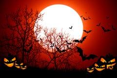 Notte spaventosa Halloween degli alberi Fotografie Stock Libere da Diritti