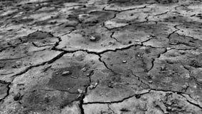 Notte triste sola del deserto Fotografie Stock Libere da Diritti