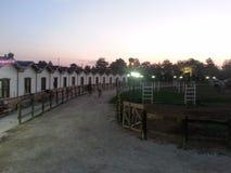 Notte walkin di area dell'azienda agricola del cavallo Immagine Stock