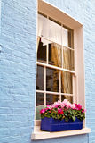 Notting   hill  area  in london england  flowers Stock Image