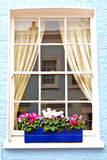 Notting   hill  area  in suburban and flowers Stock Photos