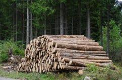 Notuje dalej Woodpile zdjęcia stock