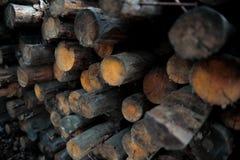 notuje drewna Fotografia Stock