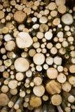 notuje składowego drewno Obraz Royalty Free
