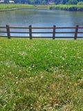 Noua-Park Stockbild