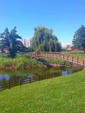 Noua park Zdjęcie Stock