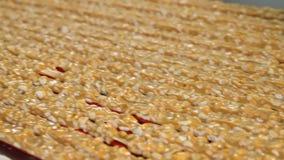 Nougat με τα καρύδια του χρυσού χρώματος φιλμ μικρού μήκους