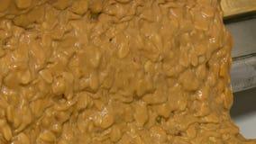Nougat με τα καρύδια του χρυσού χρώματος απόθεμα βίντεο