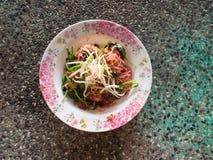 Nouille avec du porc en soja sauced Photographie stock libre de droits