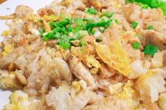 Nouille de riz frit d'émoi avec le poulet Photographie stock libre de droits