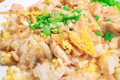 Nouille de riz frit d'émoi avec le poulet Image libre de droits
