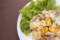 Nouille frite avec le poulet et espace pour exprimer ou faire cuire le tropique Image stock
