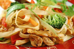 Nouille Stirfry de poulet Photographie stock libre de droits