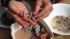 Nouilles de nettoyage à la recherche d'opale en foudre Ridge photographie stock libre de droits