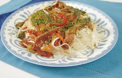 Nouilles de riz chinoises Image libre de droits