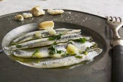 Noun in vinegar with garlic Royalty Free Stock Images