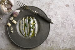 Noun in vinegar with garlic Stock Photo