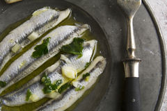 Noun in vinegar with garlic Stock Image