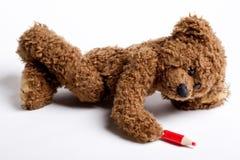 Nounours d'ours avec un crayon lecteur et un papier. Photos libres de droits
