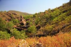 Nourlangie, kakadu nationaal park, Australië Royalty-vrije Stock Foto's