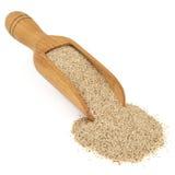 Nourriture biologique de grain de Teff Photographie stock libre de droits