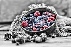 Nourriture biologique surgelée de baies photos stock