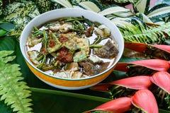 Nourriture célèbre thaïlandaise, som de Kaeng Photo stock