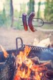 Nourriture campante Photographie stock libre de droits