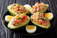 Nourriture délicieuse : salade saine d'avocat, de thon, d'oeufs et de vegetab images stock