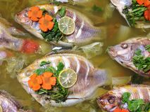 Nourriture d'ébullition de poissons Image libre de droits