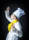 Nourriture d'échantillon de cuisinier Image stock