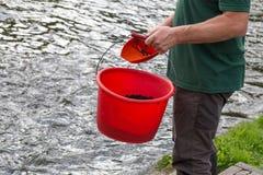 Nourriture d'élevage de poissons Image stock