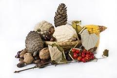 Nourriture d'automne Photo stock