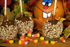 Nourriture d'automne d'amusement photographie stock libre de droits