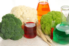 Nourriture d'OGM Images libres de droits